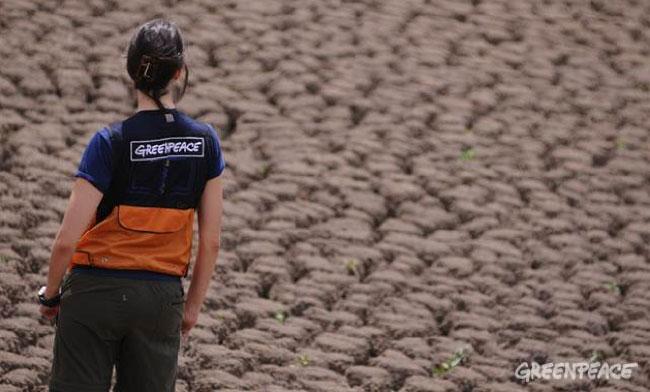 ©Lunaé Parracho / Greenpeace